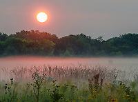 Sunrise colors the mist at Springbrook Prairie Forest Preserve in Will County, Illinois
