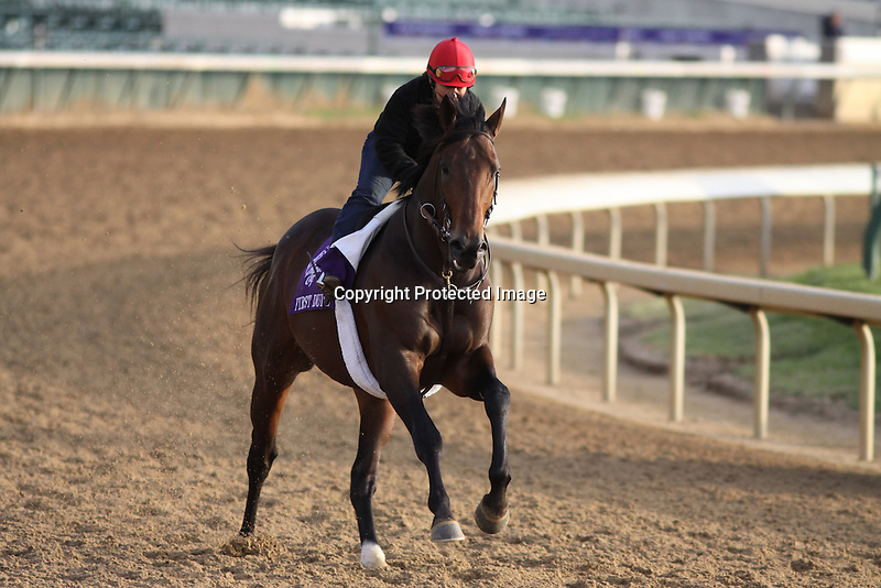 First Dude works in preparation for The Breeders' Cup at Churchill Downs. 11.02.2010..photo Ed Van Meter