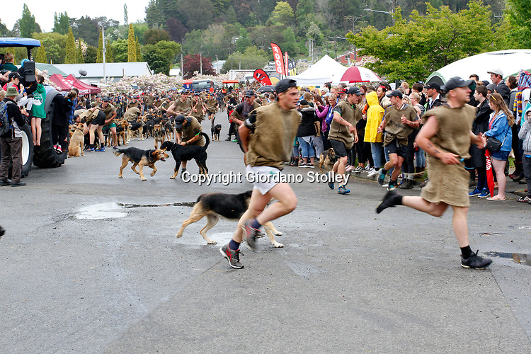 Hunterville, New Zealand - October 27, 2018 - Shepherds and their dogs start the annual Shemozzle obstacle course in which the canines and shepherds tackkle mudslides, ride in wheel barrows and carry bulls testicles. The annual Shemozzle race draws thousands every year to this town of less than 500 people. Picture: Giordano Stolley