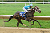 Miss Andorra winning at Delaware Park on 9/18/14