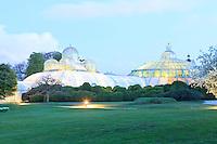 Belgique, Bruxelles, Laeken, le domaine royale du château de Laeken, les serres de Laeken durant la période d'ouverture au public au printemps // Belgique, Bruxelles, Laeken, the royal castle domain, the greenhouses of Laeken in spring. The Serre of Congo and the Winter Garden in the evening.