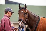 LOUISVILLE, KENTUCKY - APRIL 30: Omaha Beach and Taylor Cambra at Churchill Downs in Louisville, Kentucky on April 30, 2019. Evers/Eclipse Sportswire/CSM