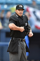 Umpire Justin Robinson before a game between the Asheville Tourists and the Greenville Drive on April 16, 2015 in Asheville, North Carolina. The Tourists defeated the Drive 5-4. (Tony Farlow/Four Seam Images)