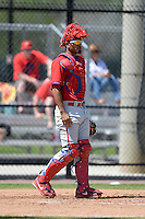 Philadelphia Phillies catcher Gabriel Lino (11) during a minor league spring training game against the Pittsburgh Pirates on March 18, 2014 at the Carpenter Complex in Clearwater, Florida.  (Mike Janes/Four Seam Images)