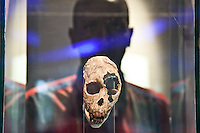 A tourist looks at a skull on display in the Nairobi National Musuem.