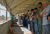 Al Tufa'ah, Gaza Strip, 20 Nov 2009.Friday prayer in a makeshit plastic mosque. Almost a year after the 'Cast Lead' israeli operation, inhabitants are still cleaning up the rubles of their homes, trying to recycle all possible material as Gaza is still under complete blockade from Israel. Hundreds of houses, farms and factories had been destroyed and bulldozed over by the Israeli army, flattening approximately an area 10km square, ruining countless families, left resourceless in what amounts to collective punishment..