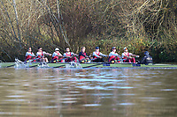 Crew: 1   Op U23 8+ U23   Oxford Brookes University Boat Club   OXB-PEPERMANS<br /> <br /> Wallingford Head 2017<br /> <br /> To purchase this photo, or to see pricing information for Prints and Downloads, click the blue 'Add to Cart' button at the top-right of the page.