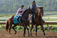 DEL MAR, CA  AUGUST 4: #9 Ancient Secret, ridden by Mike Smith, in the post parade before the Yellow Ribbon Handicap (Grade ll) on August 4, 2018 at Del Mar Thoroughbred Club in Del Mar, CA.(Photo by Casey Phillips/Eclipse Sportswire/ Getty Images)