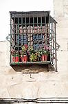 Geraniums pot plants in window box, Alhama de Granada, Andalusia, Spain