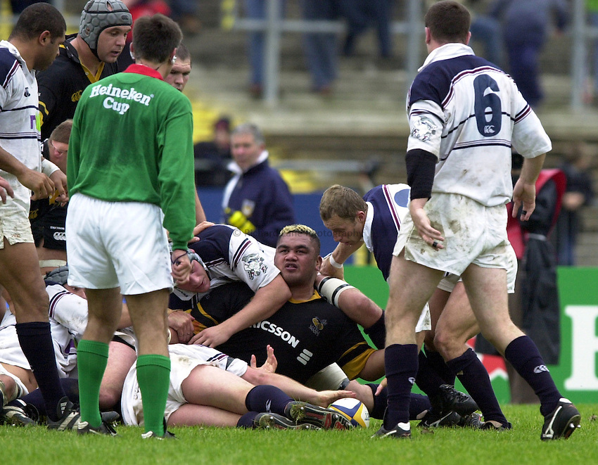 Photo. Richard Lane. .Swansea v Wasps, Heineken Cup Pool 6. 7/10/2000..Trevor Leota looks up at referee, Joel Dume from the ruck.