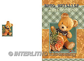 Alfredo, CHILDREN BOOKS, BIRTHDAY, GEBURTSTAG, CUMPLEAÑOS, paintings+++++,BRTOWF15115F,#BI# ,teddy bears