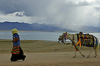 "Nomads near Namtso Lake.Namtso Lake :Namtso, another holy lake in Tibet, is located near Damxung. 4718 meters (15475 feet) above sea level and covering 1900 square kilometers (735 square miles), the lake is the highest saltwater lake in the world and the second largest saltwater lake in China. The snow capped Mt. Nyainqentanglha, considered as the son of Namtso and leader of sacred mountains, soars up to sky beside her. Singing streams converge into the clean sapphire blue lake, which looks like a huge mirror framed and dotted with flowers..The Namtso Lake is held as ""the heavenly lake"" or ""the holy lake"" in northern Tibet. .Respected as one of the three holiest lakes in Tibet, the Namtso Lake is the seat of Paramasukha Chakrasamvara for Buddhist pilgrims. In the fifth and sixth month of the Tibetan calendar each year, many Buddhists come to the lake pay homage and pray. Deep tracks are worn into the lakeshore due to this activity. In history, monasteries stood like trees in a forest around the site, attracting large numbers of pilgrims as eminent monks in Buddhist temples extended Buddhist teachings...Buddhists believe Buddhas, Bodhisattvas and Vajras will assemble to hold religious meeting at Namtso in the year of sheep on Tibetan calendar. It is said that walking around the lake at the right moment is 100,000 times more efficacious than that in normal years. That's why thousands of pilgrims from every corner of the world come to pray at the site, with the activity reaching a climax on Tibetan April 15...Walking around the lake takes a week. Ritual walkers love to burn aromatic plants to raise smoke on Auspicious Island [explain this a little] and throw a piece of hada scarf into the lake as a token of fulfilled wishes. If the scarf sinks, it implies ones wish is accepted by the Buddha; if the scarf flows on the water or only half sinks, it means one has failed to be honest and something unhappy may lie ahead...On the four sides of the lake stand four monasteries,"