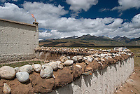 Drying Yak Dunk on the wall is a common sight in Tibet. Domesticated yaks have been kept for thousands of years, primarily for their milk, fibre and meat, and as beasts of burden. Their dried droppings are an important fuel, used all over Tibet, and are often the only fuel available on the high treeless Tibetan Plateau
