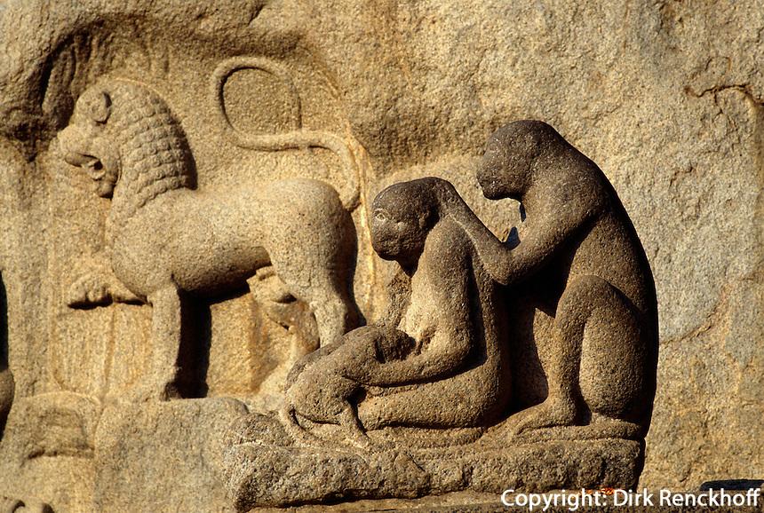 Indien, Mahabalipuram (Tamil Nadu).Relief Arjuna's penance Weltkulturerbe