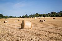 Round barley bales - Norfolk, July