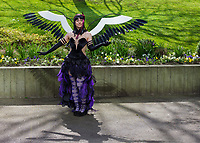 Akumal Homura Cosplay, Sakura Con 2016, Seattle, Washington, USA.