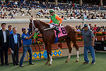 DEL MAR, CA  SEPTEMBER 2:  #8 King of Speed, ridden by Gary Stevens, in the winners circle after winning the Del Mar Juvenile Turf on September 2, 2018 at Del Mar Thoroughbred Club in Del Mar, CA. (Photo by Casey Phillips/Eclipse Sportswire/Getty ImagesGetty Images