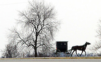 A horse and buggy travels a roadway west of Drakesville in southeast Iowa's Davis County.   It is among only a handful of rural Iowa counties in the 2010 Census to gain population (2.4 percent).  Much of that population growth is due to a steadily growing Amish population.  (Christopher Gannon/The Des Moines Register)