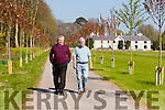 Pat Dawson regional manager of the National Parks and Widlife and Gerry Murphy Horticultural Advisor taking a stroll down the new Cherry tree walkway in the grounds of the Killarney House