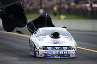 Oct. 6, 2012; Mohnton, PA, USA: NHRA pro stock driver Larry Morgan during qualifying for the Auto Plus Nationals at Maple Grove Raceway. Mandatory Credit: Mark J. Rebilas-
