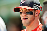 10 June 2012: Washington Nationals outfielder Bryce Harper watches play from the dugout during a game against the Boston Red Sox at Fenway Park in Boston, MA. Harper scored the game winning run in the 9th inning as the Nationals defeated the Red Sox 4-3 to sweep their 3-game interleague series. Mandatory Credit: Ed Wolfstein Photo