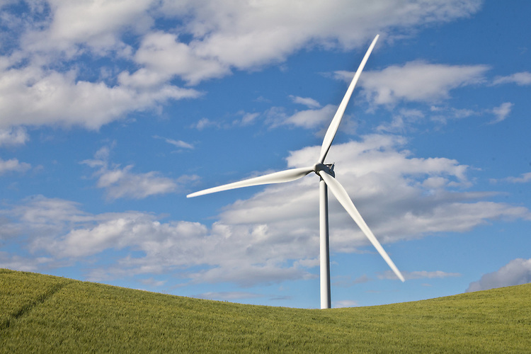 Wind Turbines, Palouse, Oakdale, Whitman County, Eastern Washington, Washington State, Pacific Northwest, United States, renewable energy, wind power, wheat fields, farms, American farms,