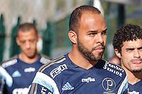 SAO PAULO,SP, 14.08.2015 - FUTEBOL-PALMEIRAS - Alecsandro durante a treino na Academia de Futebol do Palmeiras, na zona oeste de São Paulo, nesta sexta-feira, 14. (Foto: Douglas Pingituro / Brazil Photo Press)