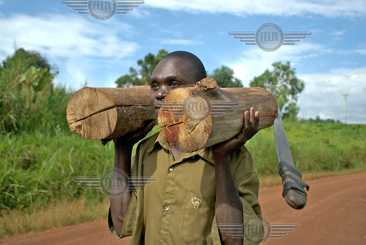 A man from Kibale District carrying firewood.