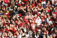 Berkeley- November 22, 2014: Fans during the Stanford vs Cal at Memorial Stadium in Berkeley Saturday afternoon<br /> <br /> The Cardinal defeated the Bears 38 - 17