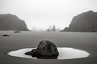 Bandon Beach, Oregon:<br /> Clammers in fog at low tide, bandon beach