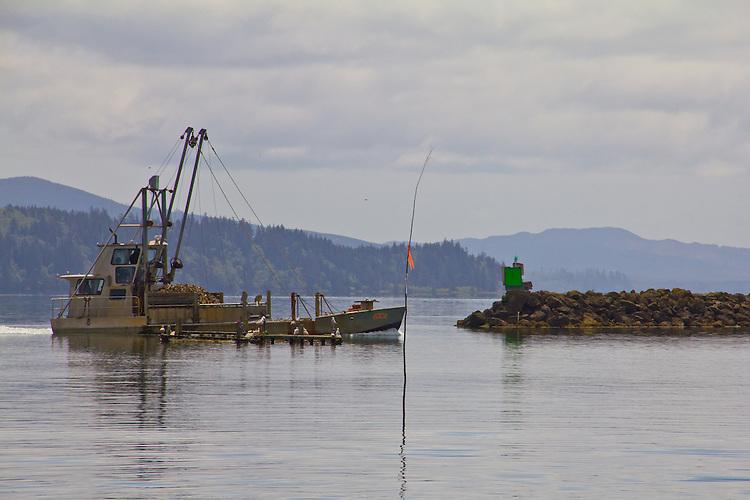 Washington Coast, Ocean Park, Nahcotta, Coast Seafoods, oyster scow, Nahcotta Express, commercial oyster farming, Willapa Bay, Pacific County, Southwest Washington, Washington State, Pacific Northwest, USA,