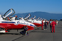 Canadian Forces Snowbirds on Display, Abbotsford International Airshow, BC, British Columbia, Canada - Snowbirds Pilots and Crew