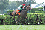 #7 Oleksandra (Aus) wins the Smart N Fancy S, ridden by Joel Rosario, trained by Neil Drysdale, Aug. 17, 2019 :during racing at Saratoga Race Course in Saratoga Springs, New York. Robert Simmons/Eclipse Sportswire/CSM
