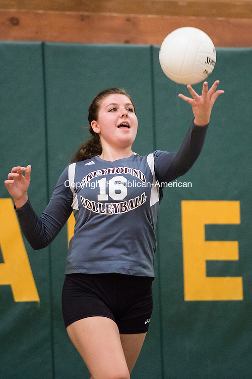 WATERBURY, CT - 8 October 2015-100815EC07-- Action man. Naugatuck's Nicole Healy serves to Holy Cross. The Greyhounds won, 3-0, at Holy Cross Thursday night. Erin Covey Republican-American.
