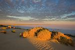 "Australia, South Australia;  Dry salt lake ""Lake Eyre"" at sunrise."