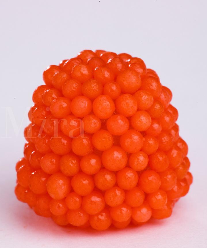 Single red gummy raspberry macro