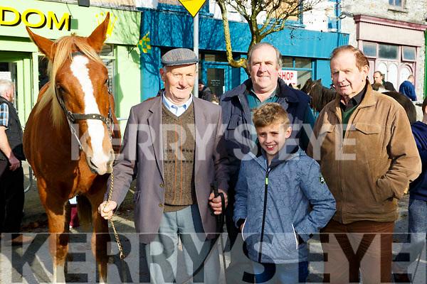 John and Dylan Enright Castlemaine, Gerald O'Shea and John Joe O'Sullivan Kenmare at the Castleisland Horse Fair on Wednesday