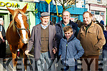 John and Dylan Enright Castlemaine, Gerald O'Shea and John Joe O'Sullivan Kenmare at the Castleisland Horse Fair on Wednesday