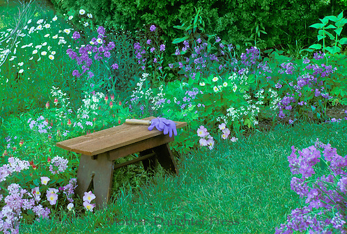 Mowed garden path with bench and variety of purple flowers and garden tools