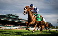 LEXINGTON, KY - OCTOBER 07: Zippesa #5 with Joe Bravo up crosses the wire first in the First Lady Stakes at Keeneland Race Course on October 07, 2017 in Lexington, Kentucky. (Photo by Alex Evers/Eclipse Sportswire/Getty Images)