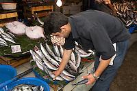 Türkei, Fischmarkt in Karaköy in Istanbul