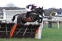 The Tin Miner ridden by Tom Cannon and trained by Chris Gordon jump the last first time around in The Strong Flavours Catering Handicap Hurdle   during Horse Racing at Plumpton Racecourse on 10th February 2020