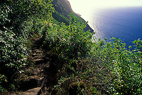 A view of the ocean along the Kalaupapa trail, leading down to the Kalaupapa settlement, which houses the remaining population of former leprosy patients. A mule ride, using the trail, takes tourists down to the pensinsula.
