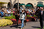 DEL MAR, CA  SEPTEMBER 1: #2 Brill in the paddock before the Del Mar Debutante (Grade 1) on September 1, 2018, at Del Mar Thoroughbred Club in Del Mar, CA.(Photo by Casey Phillips/Eclipse Sportswire/Getty ImagesGetty Images