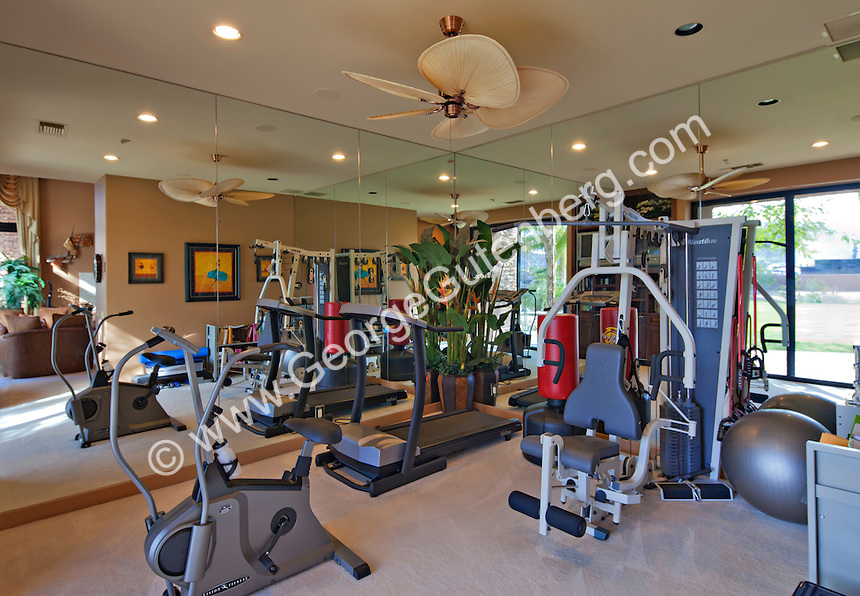 Exercise equipment is seen in elegant home gym