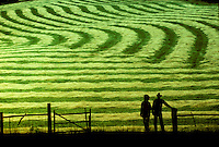 Farm couple looks over the work from the end of the day, new mown hay, Missouri USA