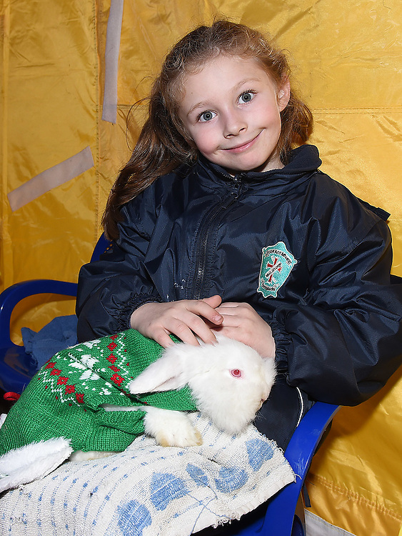 Abbey Hanley Duignan pictured at the Nativity Farm at The Old Abbey Lane. Photo:Colin Bell/pressphotos.ie