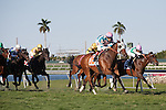 Sky Blazer with jockey Alan Garcia win an allowance turf race at Gulfstream Park, Hallandale Beach Florida. 02-01-2014