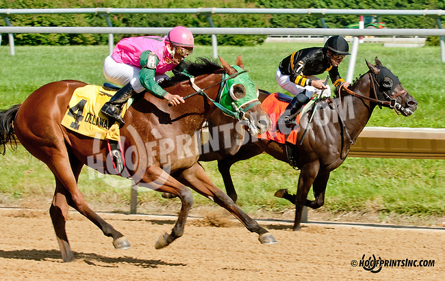 Barracuda Wayne winning The Strike Your Colors Stakes at Delaware Park on 7/29/13