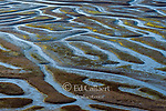 Low Tide Detail, Drakes Estero, Point Reyes National Seashore, Burton Wilderness, Marin County, California